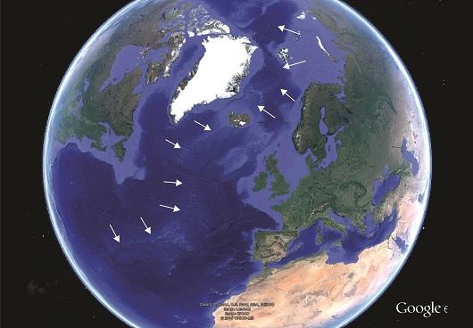 Slik ser Atlanterhavet ut i dag. Pilene peker på en sammenhengende undersjøisk fjellkjede (midthavsrygg) som kan følges fra sør i Atlanterhavet, tvers over Island, forbi Svalbard og inn i Polhavet. Det er langs denne ryggen at Atlanterhavet stadig blir bredere. Illustrasjon: Google Earth / Kjetil Indrevær