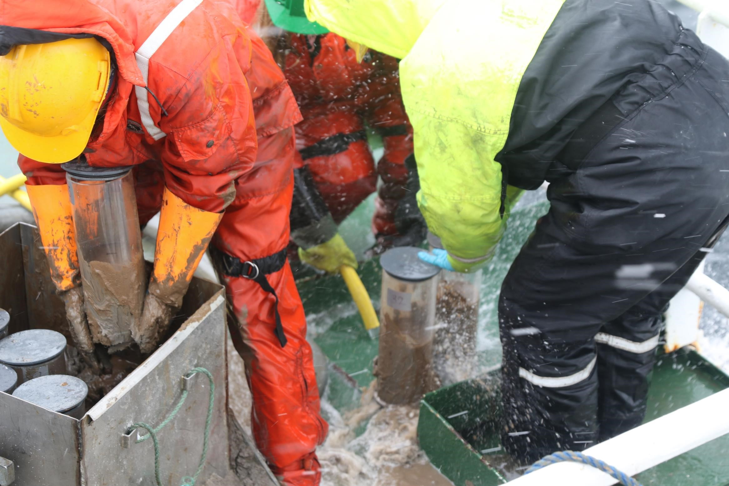 Full action with the benthic samples. Picture by Ivan Gromicho